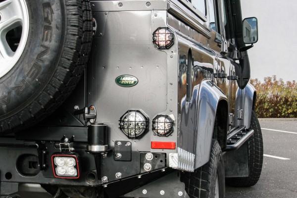 Nakatanenga Lamp Guard Type Q for Indicator/Brake/Position Lights, Pair