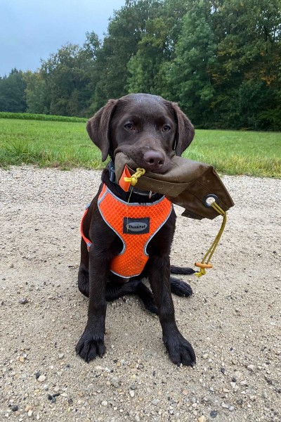 Nakatanenga dummy bag for dog training